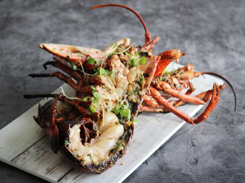 BBQ Jerk Lobster by W Harvey & Sons